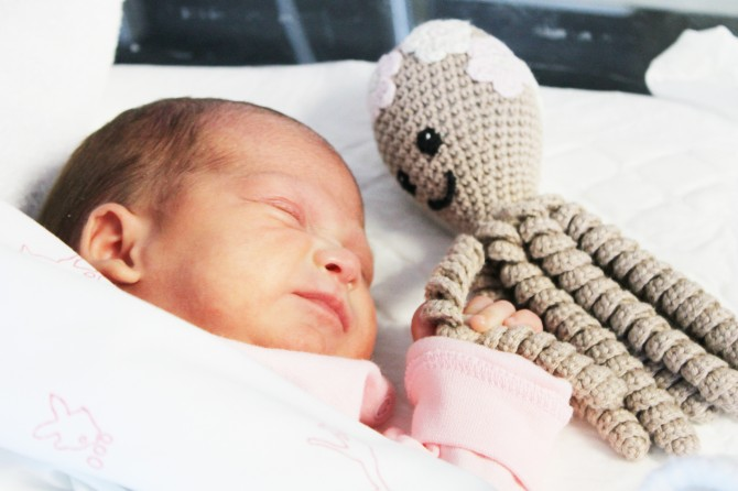 """Los muñecos de moda """"pulpitos solidarios"""" llegan a los niños prematuros del Hospital Universitario del Vinalopó"""